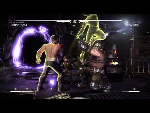 Mortal Kombat X Johnny Cage (Stunt Double) Ladder