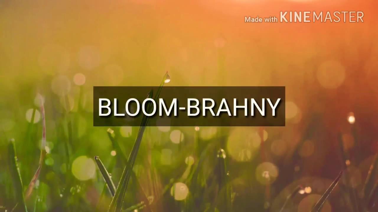 BLOOM-BRAHNY LYRICS - YouTube