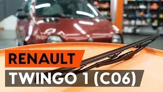 Manutenzione Twingo c06 - video guida