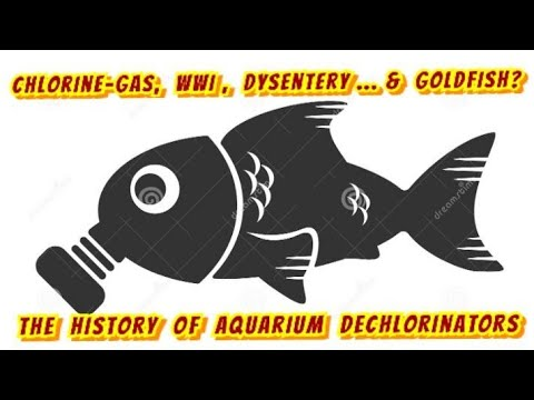 Dechlorinators Are Lowering Shrimp & Fish Fertility! Is It Even Safe?- History Of Water Conditioners