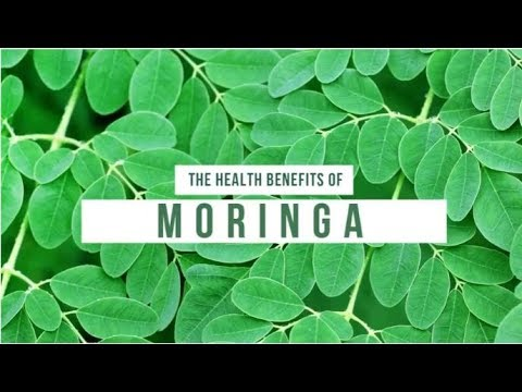 11 Amazing Benefits Of Moringa | Organic Facts