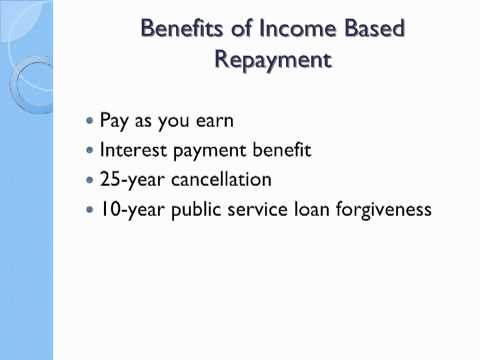 Income-Based Student Loan Repayment Program