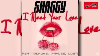 Shaggy Feat Mohombi Faydee Costi I Need Your Love Single.mp3