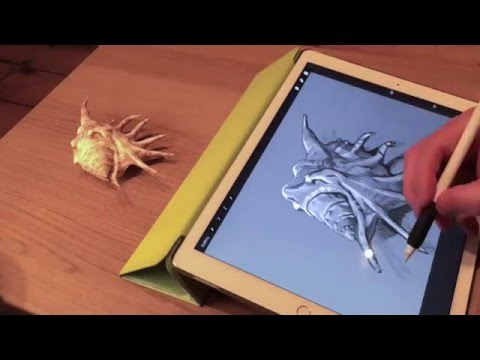 Apple Pencil drawing demo #2 on iPad Pro and artist's review