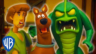 Scooby-Doo! Mystery Cases | The Case of the Party Mayhem | WB Kids