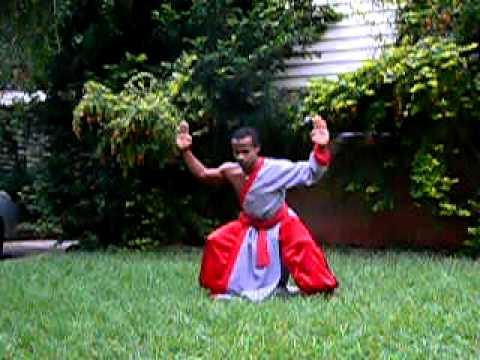 kung fu wisa