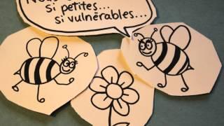 Conversation entre 2 abeilles !