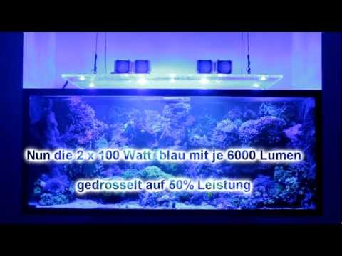 led aquarium beleuchtung 60 watt led eco lamps gegen 4x80 watt t5 funnycat tv. Black Bedroom Furniture Sets. Home Design Ideas