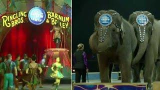 World's longest running circus to shut down