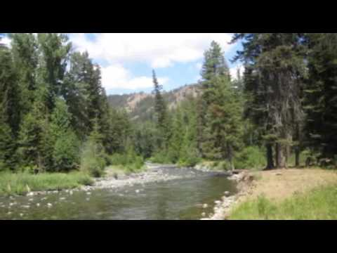 Fly Fishing Washington State Small Streams And Ponds By