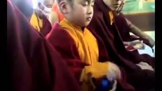 Little Monk sleeping While Praying
