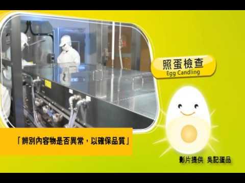 洗選蛋處理流程