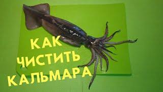 Как почистить кальмара без термообработки