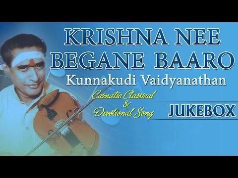 Carnatic Classical And Devotionals Songs | Krishna Nee Begane | Instrumental Music