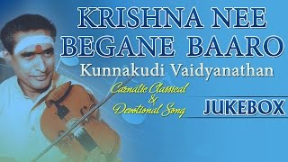 Carnatic Classical And Devotionals Songs | Krishna Nee Begane | Instrumental Music