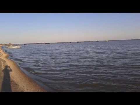 Весело-Вознесенка (ростовская область) Азовское море