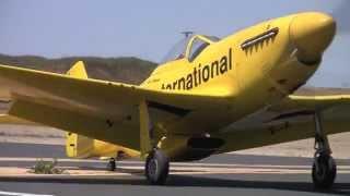 giant rc 3w p 51 maiden with 3w inline 110 engine
