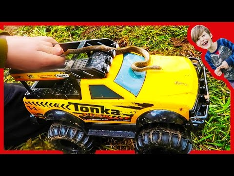 SNAKES ON TOY TRUCKS???