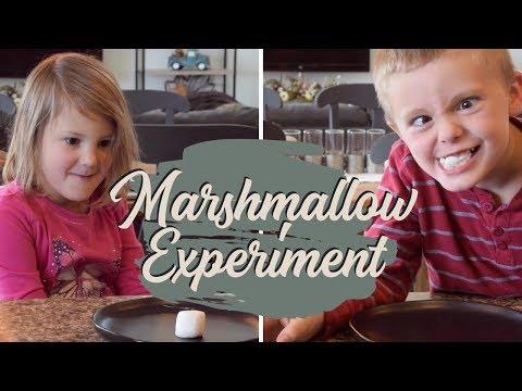 MARSHMALLOW EXPERIMENT FAIL
