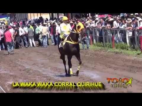 TALIBANA -WAKA WAKA - EL DURASNO - LUCHO PATO