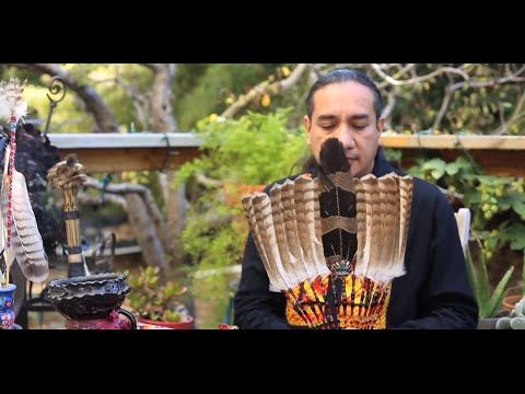 Bird Medicine And The Art Of Feathers With Ernesto Olmos