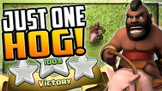 PROS Use Just ONE Hogrider! Clash of Clans Three Star Attacks!