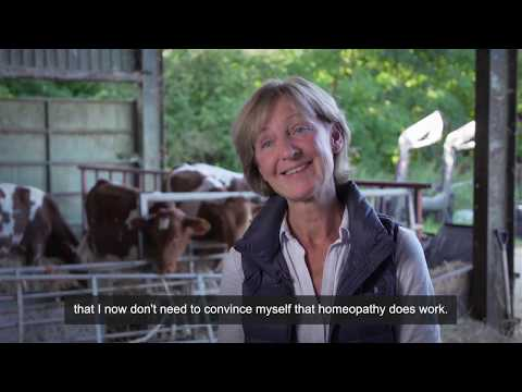 Chris has successfully used homeopathy with her cows for years