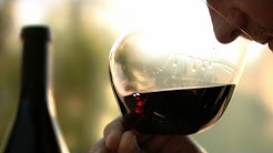 """""""Pinot Noir"""" The Holy Grail of Wine"""
