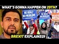 Brexit Explained in Urdu - Future of UK-EU Relations | The Wide Side