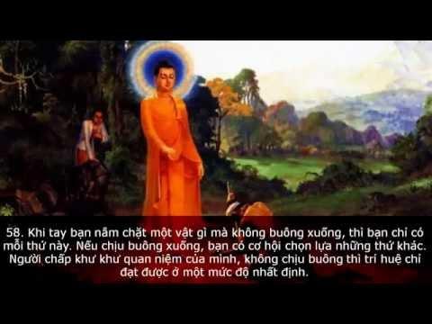 Nhạc Phật Giáo   66 Câu PHẬT HỌC Làm Chấn Động Thiền Ngữ Thế Giới  CTT