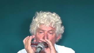 Tims Tiny Tunes #221 | Blues Rock, Level 2, Harmonica play-along lessons | Jazz harmonica licks (lr)
