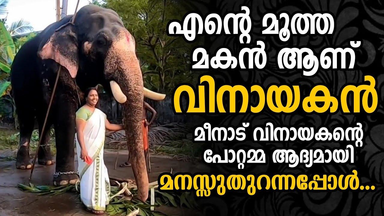 Download മീനാട് വിനായകന്റെ പോറ്റമ്മ ആദ്യമായി മനസുതുറക്കുന്നു   Meenad Vinayakan's owner Smitha about him