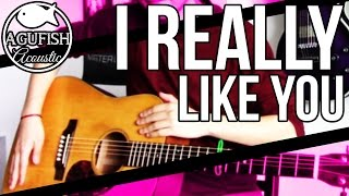 Carly Rae Jepsen - I Really Like You | Acoustic Instrumental Cover