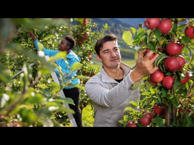 Thumbnail: Daniel takes a break from the great London