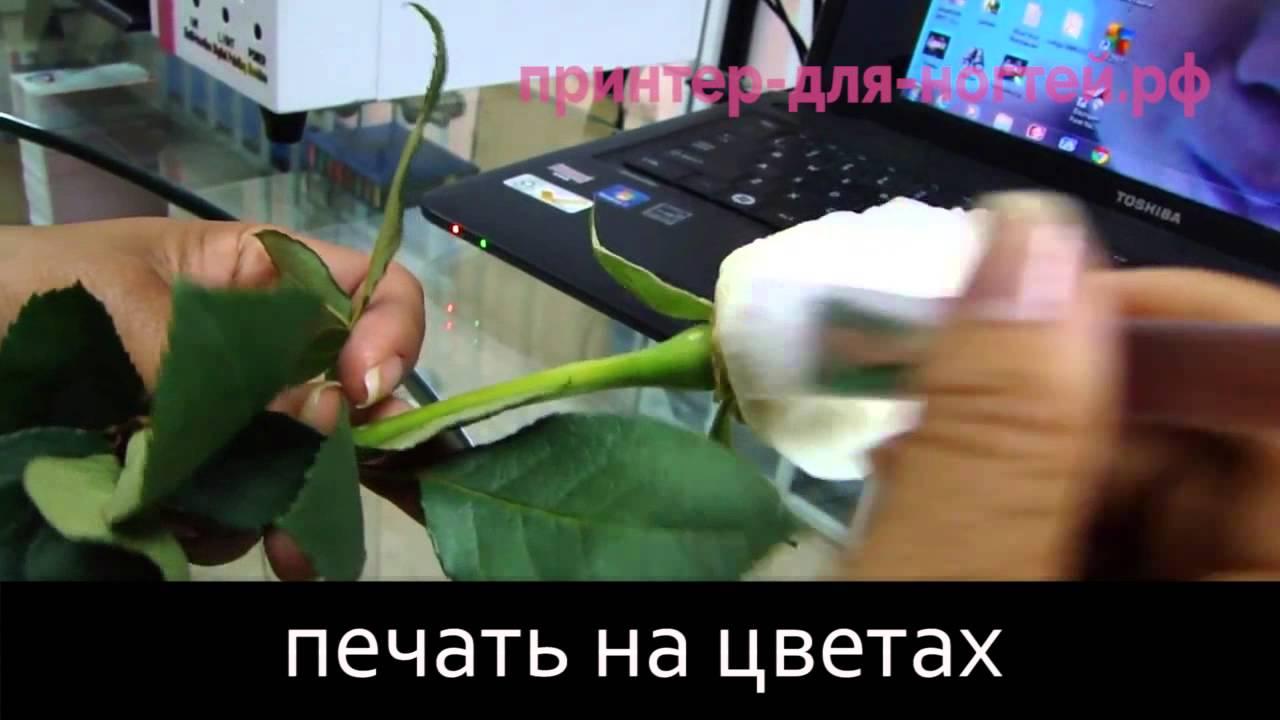 Водный принтер 2 - Екатеринбург - YouTube