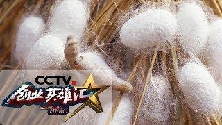 《创业英雄汇》 20190705| CCTV财经