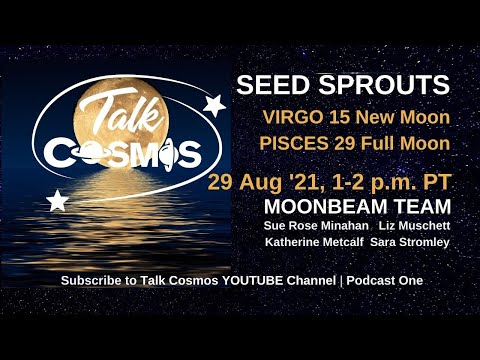 TALK COSMOS 29 Aug 21: Moonbeam Team - Seed Sprouts