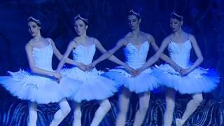 Лебединое озеро, танец маленьких лебедей. Русский имперский балет. Благовещенск, 27.04.2017