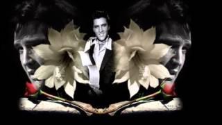 Elvis Presley   Your Love