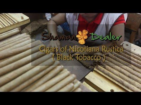 Mapacho Puro indios cigars from Peru - www.shamandealer.com