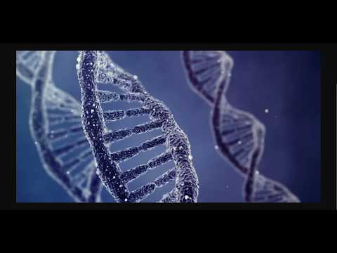 How Can DNA Really Be Altered?