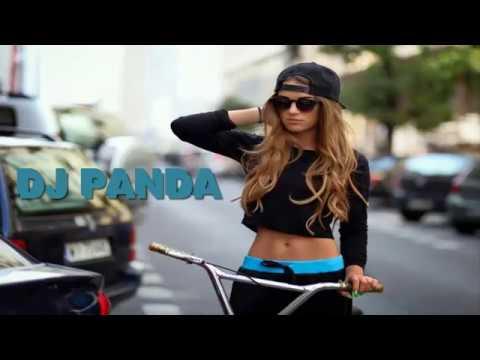 Baila Perro Baila / DJ PANDA  (download)