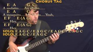 Smells Like Teen Spirit (Nirvana) Bass Guitar Cover Lesson in E with Chords/Lyrics