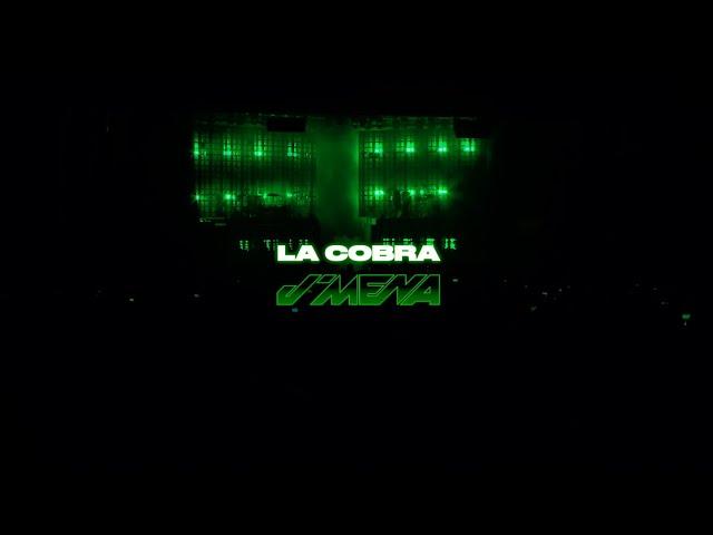 j mena - La Cobra (Live - La Cobra Tour)