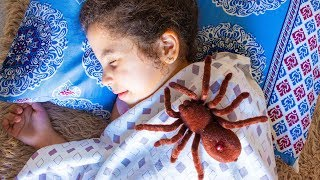 UMA ARANHA ENQUANTO DORMIA - Historinha Para Crianças!! TOY SPIDER - ARANHA DE BRINQUEDO