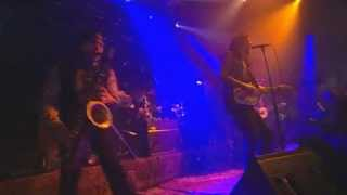 The Fuzztones - En directo en Rockpalast 10-10-2009