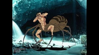 SPIDER TRANSFORMATIONS