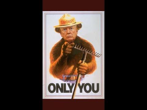 Finns Brutally Mock Trumps Forest Fire Response