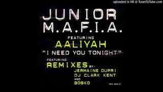 Junior M.A.F.I.A. - I Need You Tonight [Bosko's Remix] (feat. Aaliyah)
