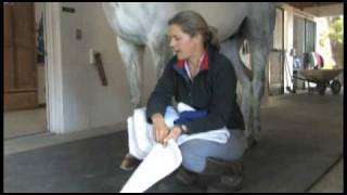 Safely Wrap Your Horse